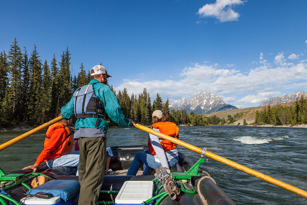 River guide floats clients down the Snake River along the Teton Mountain Range in Wyoming on a gorgeous day in Autumn.  Licensing and Open Edition Prints.