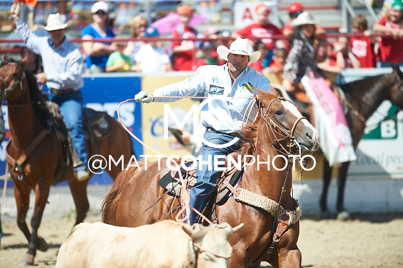 Team roper Landon McClaugherty of Tilden, TX competes at the Redding Rodeo in Redding, CA<br /> <br /> <br /> UNEDITED LOW-RES PREVIEW<br /> <br /> <br /> File shown may be an unedited low resolution version used as a proof only. All prints are 100% guaranteed for quality. Sizes 8x10+ come with a version for personal social media. I am currently not selling downloads for commercial/brand use.