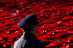 A soldier looks out over poppy wreaths laid at the Cenotaph memorial during the annual Remembrance Sunday Service in Whitehall, central London, held in tribute for members of the armed forces who have died in major conflicts.
