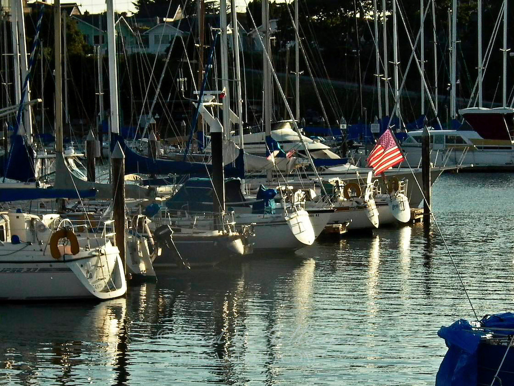 Santa Cruz Harbor 0859