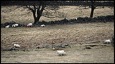 APR 5 2013 Farming in Scotland