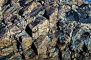 Rough granite detail, Maine, ME