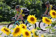 Steven Kruijswijk (NED - Team LottoNL - Jumbo) sunflowers during the 105th Tour de France 2018, Stage 18, Trie sur Baise - Pau (172 km) on July 26th, 2018 - Photo Kei Tsuji / BettiniPhoto / ProSportsImages / DPPI