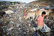 Environment & Development