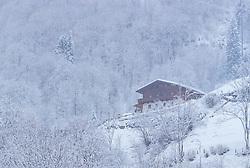 THEMENBILD - ein Bauernhaus in der winterlichen Landschaft bei Schneefall, aufgenommen am 3. Februar 2018 in Kaprun, Österreich // a farmhouse in the wintry landscape during snowfall in Kaprun, Austria on 2018/02/03. EXPA Pictures © 2018, PhotoCredit: EXPA/ JFK