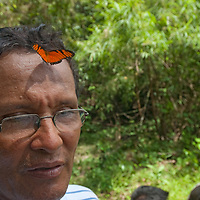 A butterfly lands on the forehead of Beder Chavez, an Indian naturalist working in Peru's Amazon Jungle.