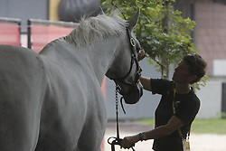 Horse care<br /> Olympic Games Hong Kong 2008<br /> Photo © Dirk Caremans - Hippo Foto`