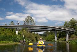 North America, United States, Washington, Bellevue, teenage man kayaking under highway bridge in Mercer Slough Nature Park.