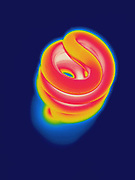 Thermogram of an energy efficient fluorescent light.  These lights use less energy than incandescent lights and operate at a cooler temperature.  The different colors represent different temperatures on the object. The lightest colors are the hottest temperatures, while the darker colors represent a cooler temperature.  Thermography uses special cameras that can detect light in the far-infrared range of the electromagnetic spectrum (900?14,000 nanometers or 0.9?14 µm) and creates an  image of the objects temperature..