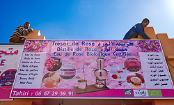 El Kelaa Des M'Gouna, the rose capital of Morocco prepares for the annual Rose Festival held in early May<br /> <br /> (c) Andrew Wilson | Edinburgh Elite media