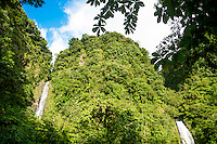 Les majestueuses chutes Trafalgar de l'île de la Dominique.<br /> <br /> The majestic Trafalgar falls in Dominica.