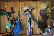 Deerheads decorate a longhouse interior walls and their horns are used to hang various garments. Kelabit Longhouse. Limbang, Sarawak, Malaysia 2015<br /><br />Borneo native peoples and their rainforest habitat revisited two decades later: 1989/1991 and 2012/2014/2015. <br /> <br /> Sarawak's primary rainforests have been systematically logged over decades, threatening the sustainable lifestyle of its indigenous peoples who relied on nomadic hunter-gathering and rotational slash & burn cultivation of small areas of forest to survive. Now only a few areas of pristine rainforest remain; for the Dayaks and Penan this spells disaster, a rapidly disappearing way of life, forced re-settlement, many becoming wage-slaves. Large and medium size tree trunks have been sawn down and dragged out by bulldozers, leaving destruction in their midst, and for the most part a primary rainforest ecosystem beyond repair. Nowadays palm oil plantations and hydro-electric dam projects cover hundreds of thousands of hectares of what was the world's oldest rainforest ecosystem which had some of the highest rates of flora and fauna endemism, species found there and nowhere else on Earth, and this deforestation has done irreparable ecological damage to that region