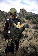 A pet cat is carried in a rucsac in Joshua Tree National Park, California, United States