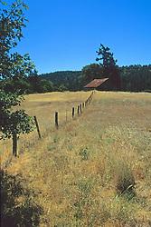Northern California Field