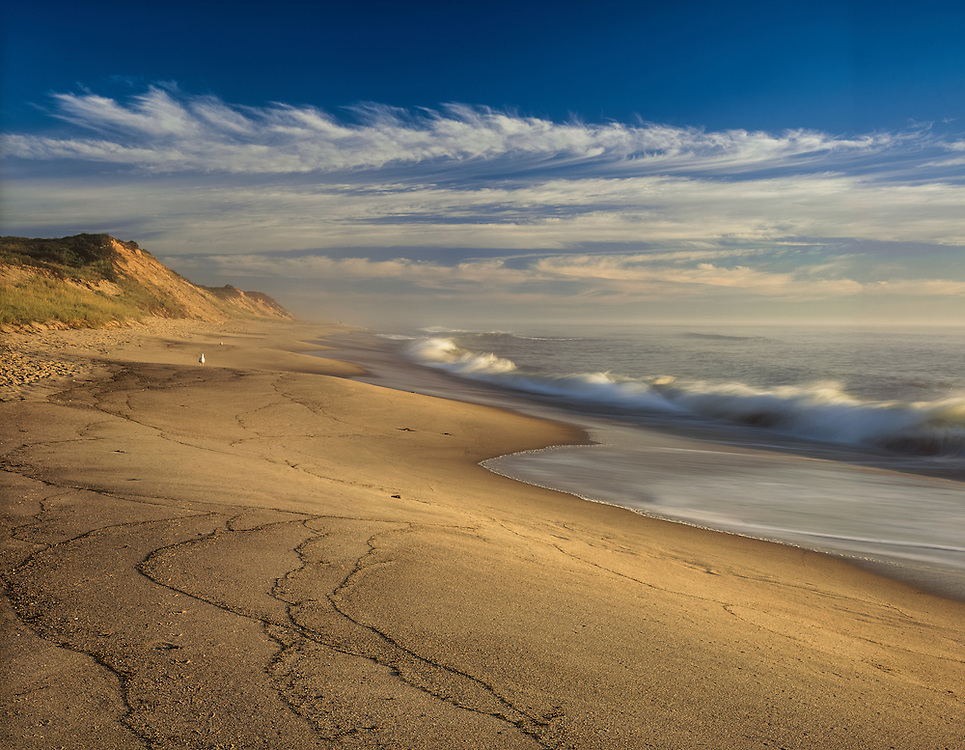 Beach & dunes with rolling waves, seagull on shore, blue sky & clouds, Cape Cod National Seashore, Eastham, MA