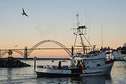 Fishing boat leaves harbor at dawn, Newport, Oregon coast