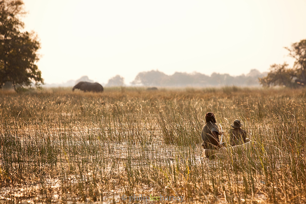 In the Okavango Delta people travel by Makoro, a dug out wooden canoe, enabling them to get close to wildlife. Near Seronga, Botswana. The Polers Trust is a community initiative offering tours to tourists.