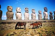 Cimarrones / Caballos salvajes y Moais en Isla de Pascua / Rapa Nui / Chile<br /> <br /> Cimarrones / Moais and wild horses in Easter Island / Rapa Nui / Chile<br /> <br /> Edición de 10 | Fine Art