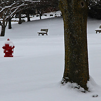 """""""Seeing Red""""<br /> <br /> A bright sight on snowy day! A wonderful shiny red fire hydrant in a snow filled winter scene!!<br /> <br /> Winter in Michigan by Rachel Cohen Winter in Michigan!<br /> <br /> Beautiful winter scenes, winter wonderlands, and lone trees in winter!<br /> <br /> Images in color, B&W, and using selective color.<br /> <br /> If you love winter, snow, trees, rolling hills, and lone trees then you'll find a lovely selection!! <br /> <br /> Winter in Michigan by Rachel Cohen"""