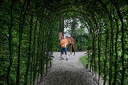 Boonzaaijer Henrieke, Zindane, NED<br /> Landgoed Hoge Ginkel - Amerongen 2016<br /> © Hippo Foto - Dirk Caremans<br /> 27/07/16