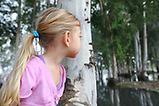 Young girl plays hide and seek behind a eucalyptus tree