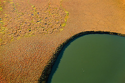 Aerial view of tussock tundra