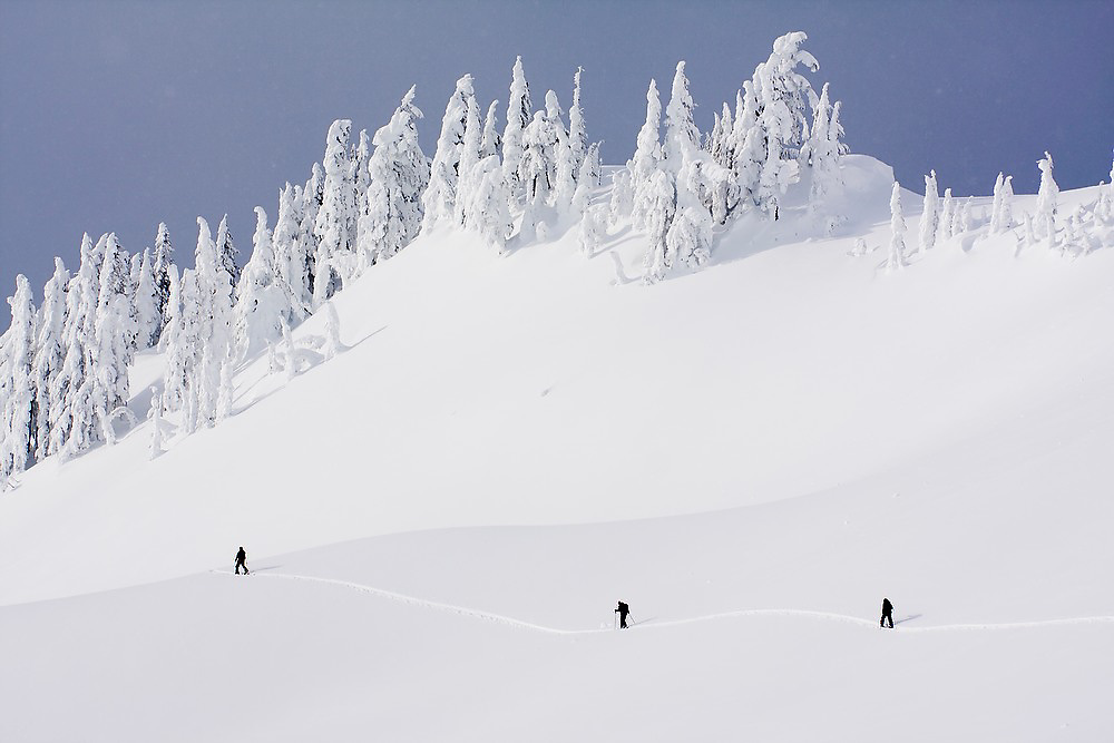 Skiers follow ski tracks in the Mount Baker backcountry along the classic ski tour around Table Mountain, Mount Baker-Snoqualmie National Forest, Washington.