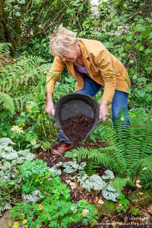 Carol klein adding leaf mould to a border