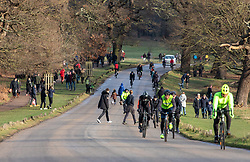 © Licensed to London News Pictures. 02/01/2021. London, UK. Families, walkers and cyclists enjoy a stroll in the sunshine in tier 4 restrictions on the first Saturday of 2021 in a busy Richmond Park, South West London as weather forecasters predict a milder week ahead with rain. Last Wednesday the Oxford vaccine was approved for use, with the government securing over 100 million doses with an expected full rollout of vaccinations from this Monday, January 4th 2021 as the coronavirus pandemic crisis continues into the new year. UK. Photo credit: Alex Lentati/LNP