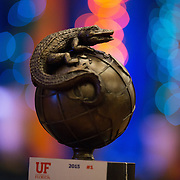 University of Florida-Symbols