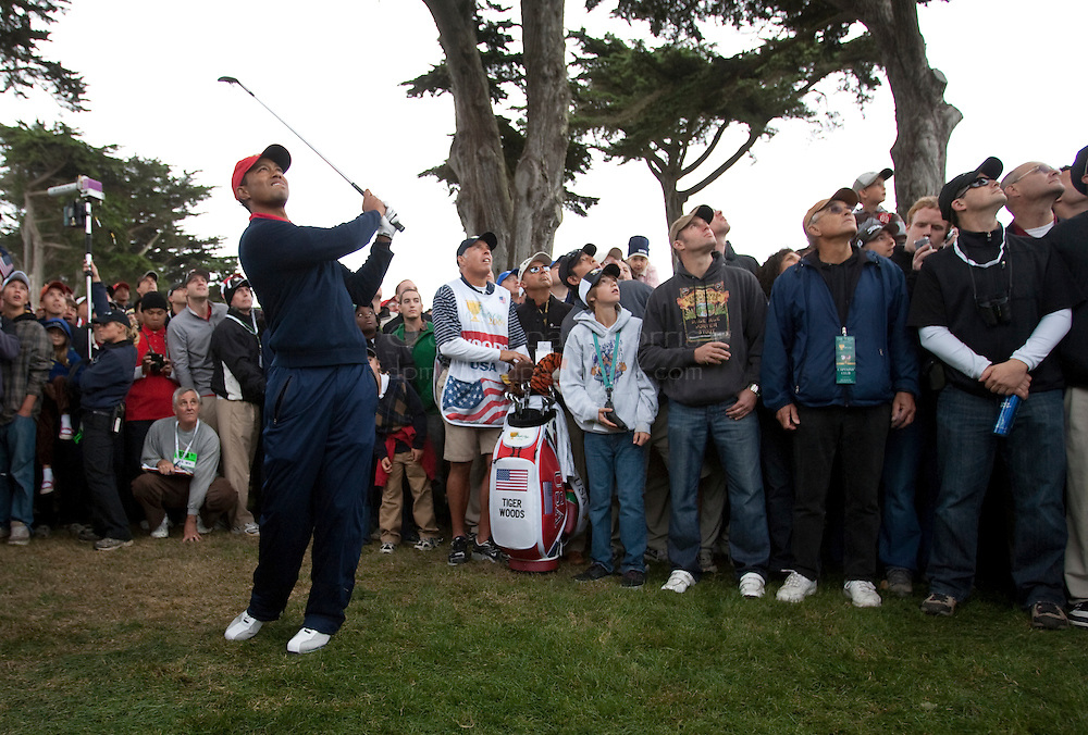 Tiger Woods hits out of the rough on the 13th hole during final round action of the Presidents Cup at Harding Park Golf Course October 11, 2009 in San Francisco, California.  Photograph by David Paul Morris