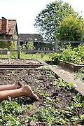 Muddy feet in the vegetable garden at Hares Farm. CREDIT: Vanessa Berberian for The Wall Street Journal<br /> UKFARM-Hares Farm