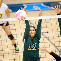 111413  Adron Gardner/Independent<br /> <br /> Newcomb Skyhawks Shyan Lee (12), left, and Geneva Nez (13)  attempt a block on the Hatch Valley Bears during the state volleyball tournament at Cleveland High School in Rio Rancho Thursday.  The Skyhawks fell to the Bears in three sets.