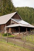 Scottie put in solar panels on the barn last year.