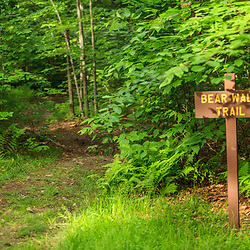Benton, PA, USA - June 15, 2013: Bear Walk Trail sign in Pennsylvania's Ricketts Glen State Park.