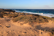 Coastal landscape sandy beach dunes, Corralejo, Fuerteventura, Canary Islands, Spain