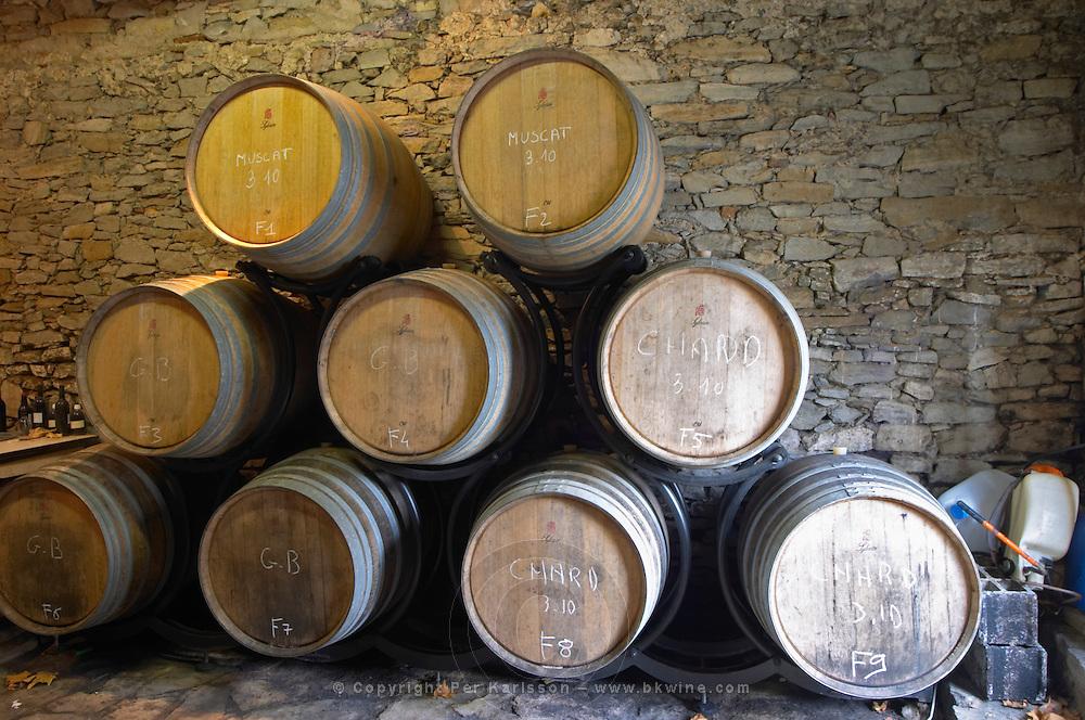 Domaine Piccinini in La Liviniere Minervois. Languedoc. Barrel cellar. France. Europe.