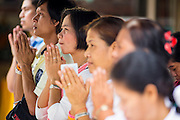 """29 SEPTEMBER 2012 - NAKORN NAYOK, THAILAND:  Thai Buddhists pray during observances of Ganesh Ustav at Wat Utthayan Ganesh, a temple dedicated to Ganesh in Nakorn Nayok, about three hours from Bangkok. Many Thai Buddhists incorporate Hindu elements, including worship of Ganesh into their spiritual life. Ganesha Chaturthi also known as Vinayaka Chaturthi, is the Hindu festival celebrated on the day of the re-birth of Lord Ganesha, the son of Shiva and Parvati. The festival, also known as Ganeshotsav (""""festival of Ganesha"""") is observed in the Hindu calendar month of Bhaadrapada, starting on the the fourth day of the waxing moon. The festival lasts for 10 days, ending on the fourteenth day of the waxing moon. Outside India, it is celebrated widely in Nepal and by Hindus in the United States, Canada, Mauritius, Singapore, Thailand, Cambodia, Burma , Fiji and Trinidad & Tobago.     PHOTO BY JACK KURTZ"""