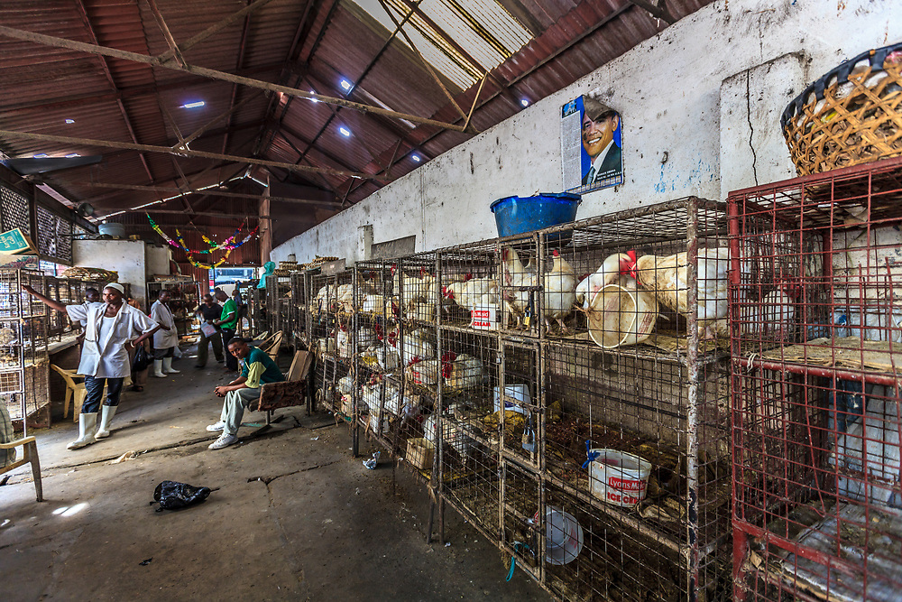 Mackinnon chicken Market in Mombasa, Kenya. People usually buy their chickens alive and butcher them in their kitchen.