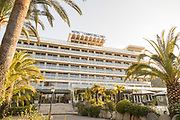 Palm trees in front of Hotel, Ajaccio, Corsica, France