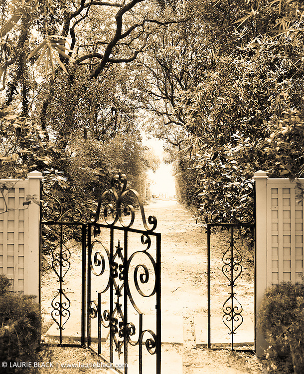 Romantic garden path behind wrought iron gate.