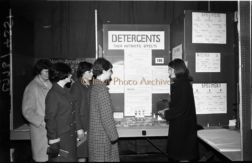 04/01/1967.01/04/1967.4th January 1967 .The third annual Aer Lingus Young Scientist Exhibition at the RDS..Aine Ni Bhraonain (on right of picture) Clocher Lughaidh, Carraig Mhachaire Rois, Co Muineachain, explains her exhibit 'To make a type of Consumer index of various commercial preporations which are claimed to have bactoricidal properaties' to L to R Una Ni Dlachartaigh, Rita Ni Chearbhaill, Mairead Ni Eilis (three past pupils of Clochair Lughaidh, Muineachain) and Aine Ni Mhurnain, Clocher Lughaidh, Muineachain. .....