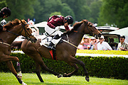 April 29, 2017, 22nd annual Queen's Cup Steeplechase. SHOW COURT and jockey Willie McCarthy jumps the last next to ICE IT and jockey Sean McDermott in the $75,000. THE QUEEN'S CUP MPC 'CHASE. Sport of Kings Novice Hurdle Stakes