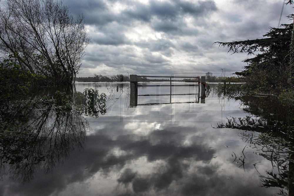 © Licensed to London News Pictures. 19/11/2015. Acaster Selby  UK. Picture shows flooding at Acaster Selby after the River Ouse broke it's banks & flooded farm land in the area. The environment agency has said further flooding in the area is expected today. Photo credit: Andrew McCaren/LNP