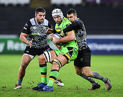 Northampton Saints' Michael Paterson is tackled by Ospreys' Tom Habberfield<br /> <br /> Photographer Craig Thomas/Replay Images<br /> <br /> EPCR Champions Cup Round 4 - Ospreys v Northampton Saints - Sunday 17th December 2017 - Parc y Scarlets - Llanelli<br /> <br /> World Copyright © 2017 Replay Images. All rights reserved. info@replayimages.co.uk - www.replayimages.co.uk