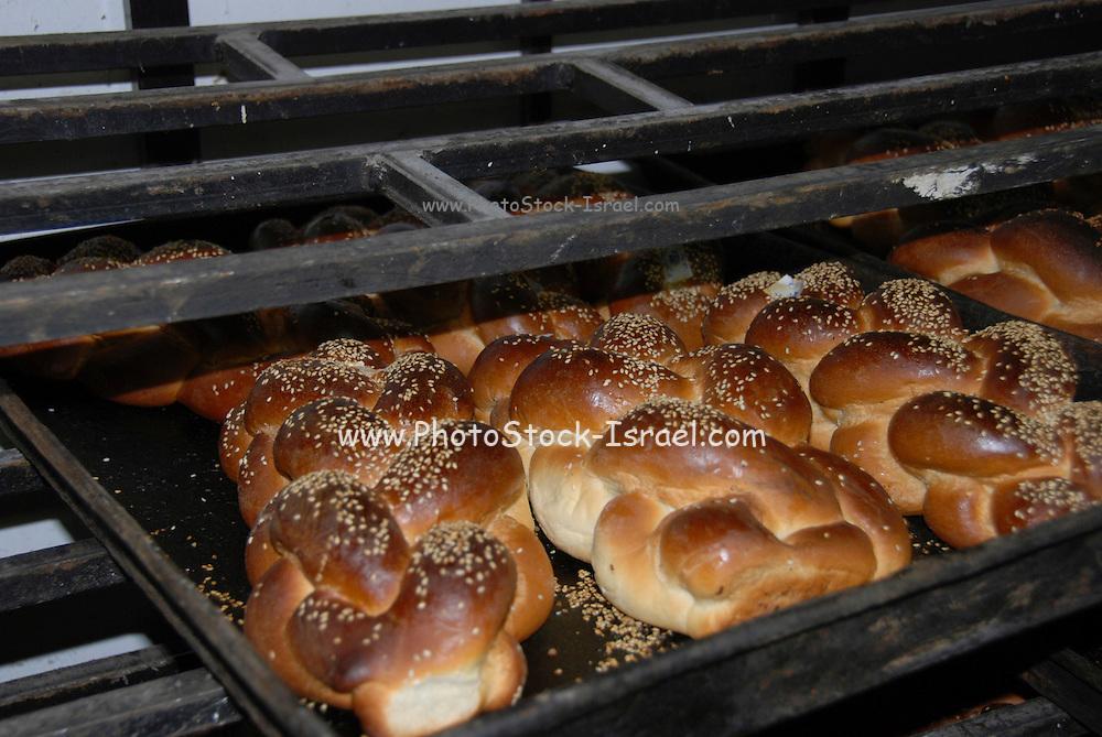 Freshly baked Challah
