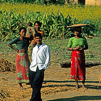 Asia, Nepal, Bardia. Local farmers in the Terai region of Bardia.
