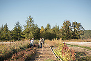 Farmers, researchers, chefs, and seed breeders discuss organic seed breeding at Adaptive Seeds Farm in Sweet Home, OR.