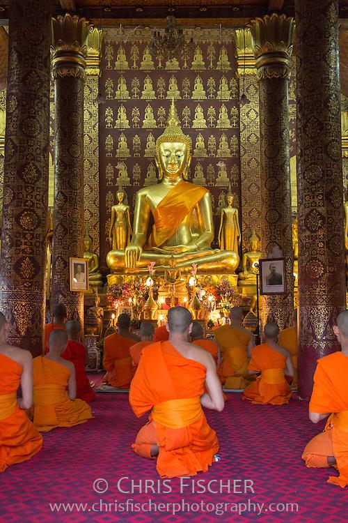 Young novice monks in meditation at Wat Nong, Luang Pranbang, Laos.