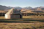 Yurt and flock of sheep on the jailoo (summer pasture) east of lake Song Köl, Kyrgyzstan